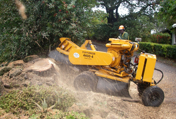 Knoxville Stump Grinding